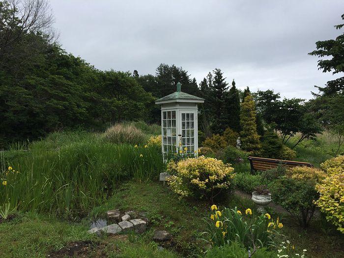 Oryginalny telefon na wietrze z Japonii