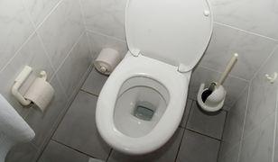 Zobacz gdzie płynie zawartość Twojej toalety