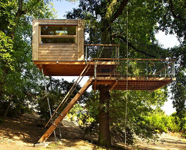 Domek na drzewie - dla dzieci i dorosłych