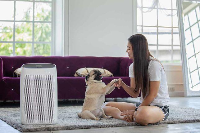 Na jakie cechy zwrócić uwagę, kupując oczyszczacze powietrza do domu?