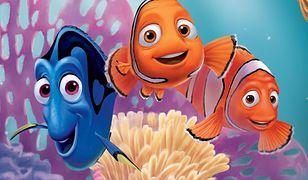 Gdzie jest Nemo? 3D.