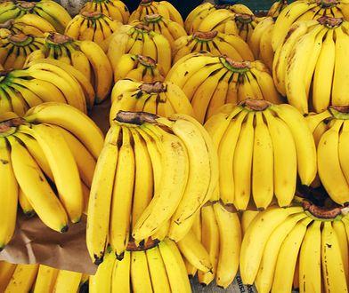 W kartonach z bananami odnaleziono ok. 76 kilogramów kokainy