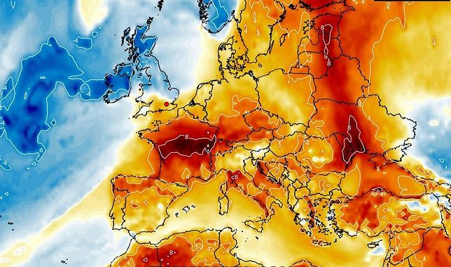 Pogoda w najbliższych dniach będzie dynamiczna. Nadciąga ochłodzenie i silne uderzenie wiatru