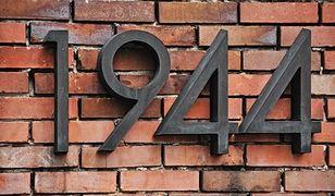 """Muzeum Powstania Warszawskiego pokaże film BBC Earth: """"Warszawa – zmartwychwstałe miasto"""""""