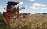 Kredyt klęskowy dla rolników 2018