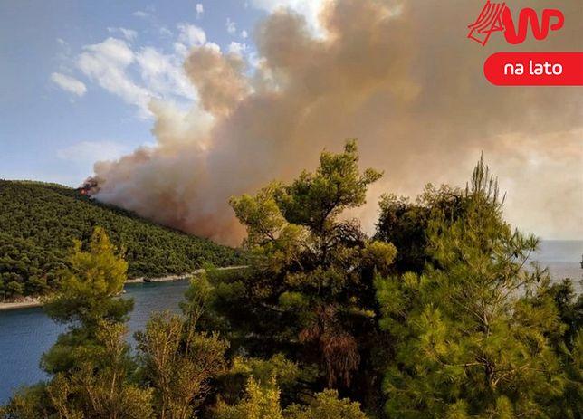 """Pożar na wyspie Skopelos. """"Turystom nie zagraża niebezpieczeństwo"""""""