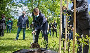Warszawa. Z okazji święta samorządów posadzono symboliczne jabłonie