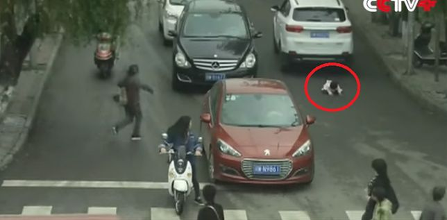 Dwa samochody przejechały nad małą dziewczynką, a jej prawie nic się nie stało