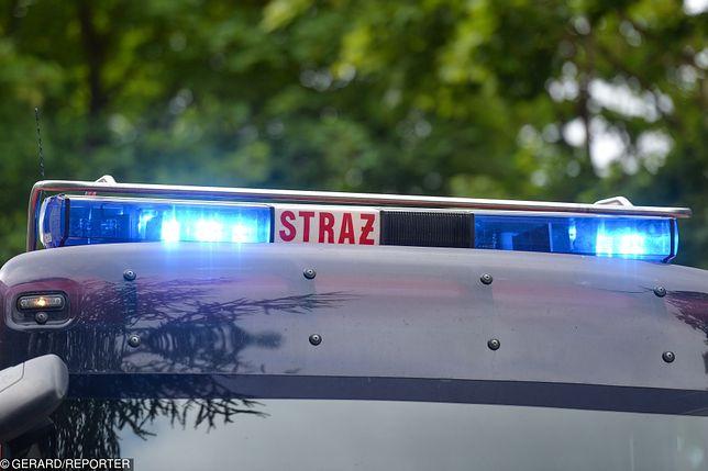 Wadowice: Pożar w Lidlu. Zawalił się dach sklepu
