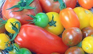 Najsmaczniejsze odmiany pomidorów – jaki mają smak, czym się charakteryzują?