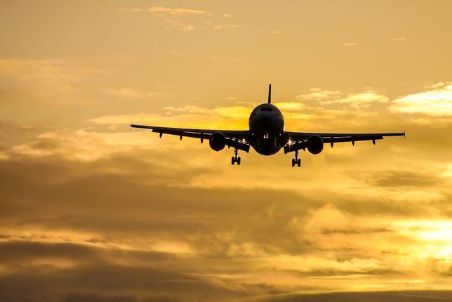 Wstyd przed lataniem działa. Szwedzi naprawdę rezygnują z podróży samolotami