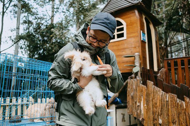 """Zoo w Indonezji planuje uśmiercić część zwierząt. """"Nie ma innego wyjścia"""""""