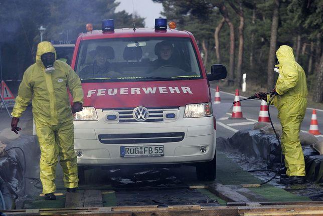 Niemcy. Apel minister rolnictwa ws. ptasiej grypy