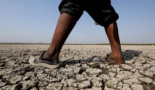 Rekordowe upały w Indiach. Temperatura przekroczyła już 50 stopni Celsjusza