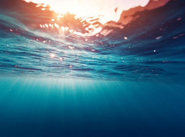 Ocean skrywa zaskakującą ilość surowców