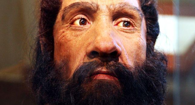 Dlaczego neandertalczycy wyginęli?