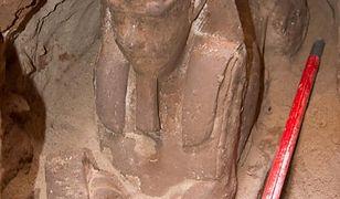 Odkryto posąg sfinksa sprzed 2300 lat. Jest praktycznie nienaruszony