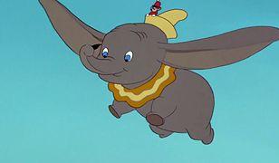 """""""Dumbo"""" w wersji Tima Burtona przeraża. Szykuje się filmowa klęska?"""