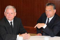 Czego Kaczyński może nauczyć się od Orbana? Kilka wyborczych lekcji