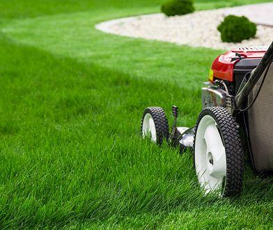 Kosiarka to nie jedyne urządzenie do koszenia trawy