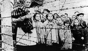 """""""Bawiły się w Żydów i nazistów albo liczyły zwłoki"""". Koszmar dzieci, które trafiły do obozów koncentracyjnych"""