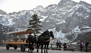 Turyści utknęli na Włosienicy