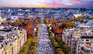 """Turyści w Paryżu ostrzegani przed """"szczurami hotelowymi"""".  Kradną bagaże i kosztowności"""