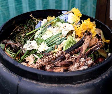 Kompostowanie odpadów to najlepszy sposób na naturalny i darmowy nawóz