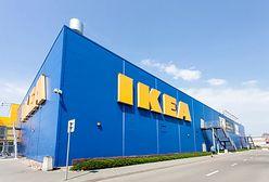 """IKEA skapitulowała. Masowe problemy z dostawami. """"Jakikolwiek kontakt to abstrakcja"""""""