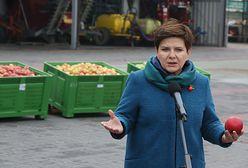 """Amerykańscy inspektorzy sanitarni w Polsce. """"Sprawa miesięcy, a może tygodni"""""""