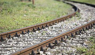 """Sprawa """"złotego pociągu"""" w prokuraturze. Żądają dymisji generalnego konserwatora zabytków"""