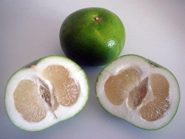 Popularna nazwa dla grejpfruta zielonego to sweetie