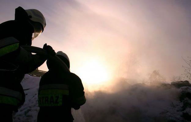 Trzeci, najwyższy stopień zagrożenia pożarowego w lasach na Śląsku