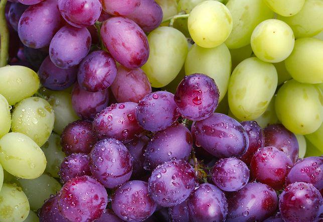 Jak powstają bezpestkowe winogrona?
