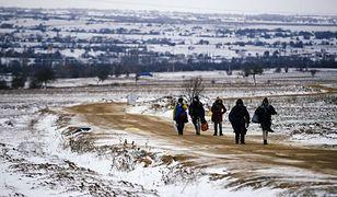 Migranci przekraczają granicę macedońsko-serbską, styczeń 2016 r.
