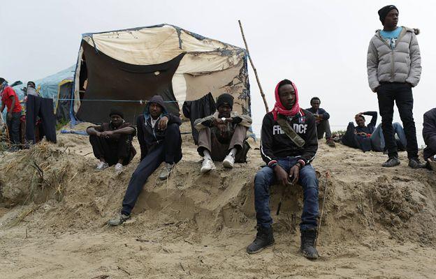 Przerażający wypadek w Calais. Winne gangi uchodźców napadające na samochody i ciężarówki