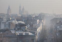 Klęska żywiołowa w Małopolsce. Mieszkańcy mają dość trującego smogu