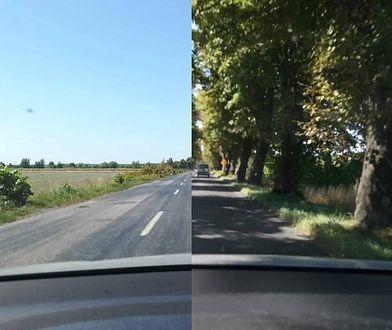 Droga z Sulechowa do Trzebiechowa w województwie lubuskim zmieniła się nie do poznania