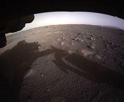Pogoda na Marsie nie rozpieszcza. NASA opublikowała dane z łazika