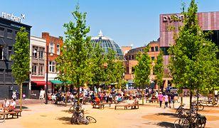 Eindhoven to miejsce bardzo przyjazne, tolerancyjne i pełne dobrej energii, którą mieszkańcy chętnie dzielą się z przyjezdnymi