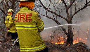 Pożary buszu to skutek suchego australijskiego klimatu