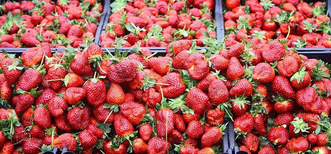 Pierwsze polskie truskawki pochodzą ze szklarni