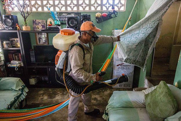 W RPA zarejestrowano pierwszy przypadek zakażenia wirusem Zika