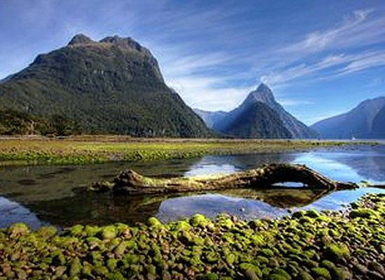 Wstrząsy w Nowej Zelandii, ogłoszono zagrożenie tsunami