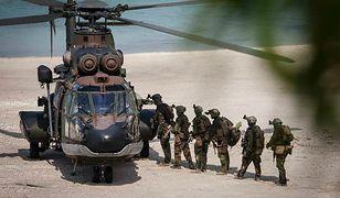 Polska firma wygrała przetarg dla armii Holandii. Kontrakt jest wart 5 mln euro