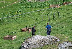 Szwajcaria. Pękła lina kolejki gondolowej. Są ranni