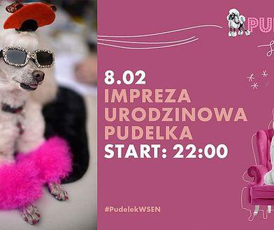 Już 8 lutego odbędzie się wielka impreza urodzinowa w warszawskim klubie SEN