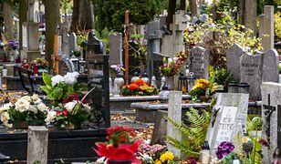 Co z cmentarzami na Wszystkich Świętych? Pojawił się kontrowersyjny pomysł
