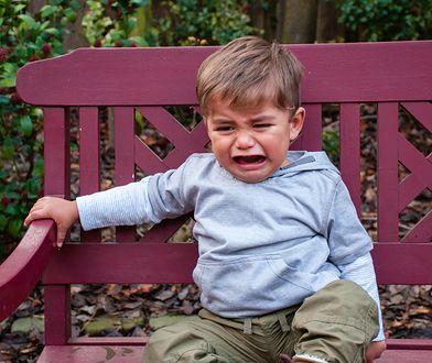 Płacz dzieci denerwuje wiele osób