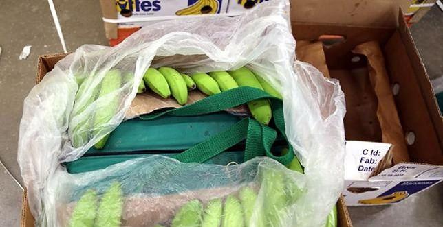 Jaki los czeka kokainę znalezioną w bananach? Policja mówi, że trzeba czekać na decyzję sądu
